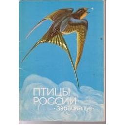Птицы россии. Забайкалье
