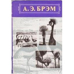 Жизнь животных. Птицы. Том II/ Брэм А. Э.