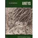 Antys/ Logminas V.