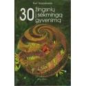 30 žingsnių į sėkmingą gyvenimą/ Tepperwein K.