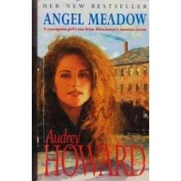 Angel meadow/ Howard A.