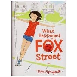What Happened on Fox Street/ Springstubb T.
