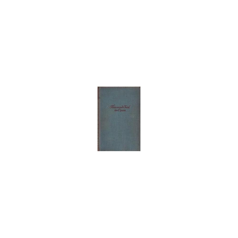 Flammende insel im Ozean/ Schumann W.