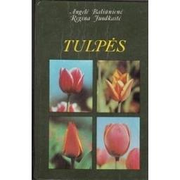 Tulpės/ Baliūnienė A., Juodkaitė R.