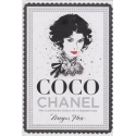 Coco Chanel: The Illustrated World of a Fashion Icon/ Hess M.