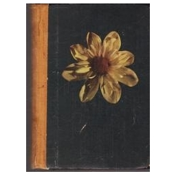Pasakos apie gėles/ Sakse A.