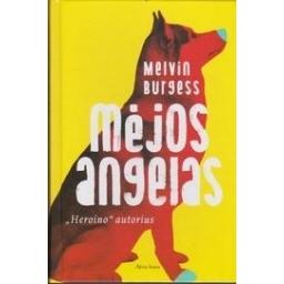 Mėjos angelas/ Burgess M.