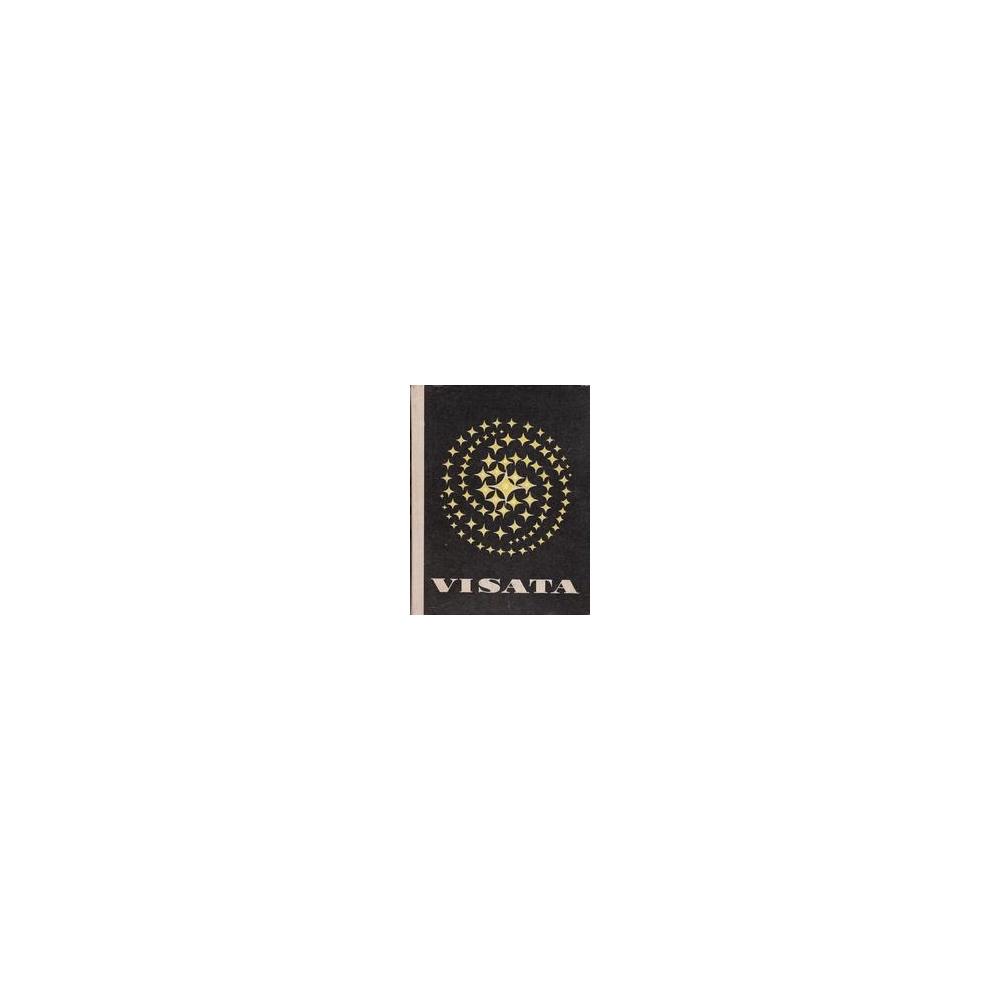 Visata (Fizika I)
