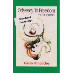 Odyssey to Freedom in 64 Steps/ Rinpoche G.