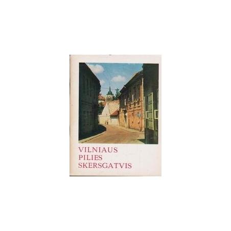 Vilniaus pilies skersgatvis/ Levandauskas V.