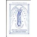 Apie tobulą pamaldumą Švč. Mergelei Marijai/ Šv. Liudvikas M. G. De Monfront