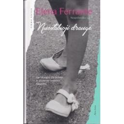 Nuostabioji draugė/ Ferrante E.